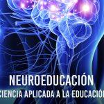 Neuroeducación: Uniendo las neurociencias y la educación en la búsqueda del desarrollo humano